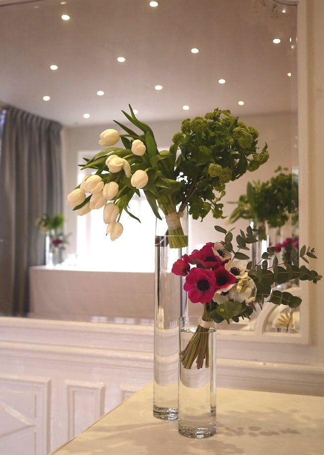 anémone, viburnum, tulipe,