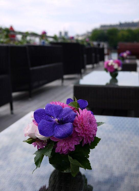 dahlia, hortensia, orchidée, rose