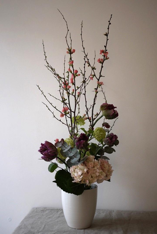 cognassier du japon, tulipe, viburnum, hortensia,