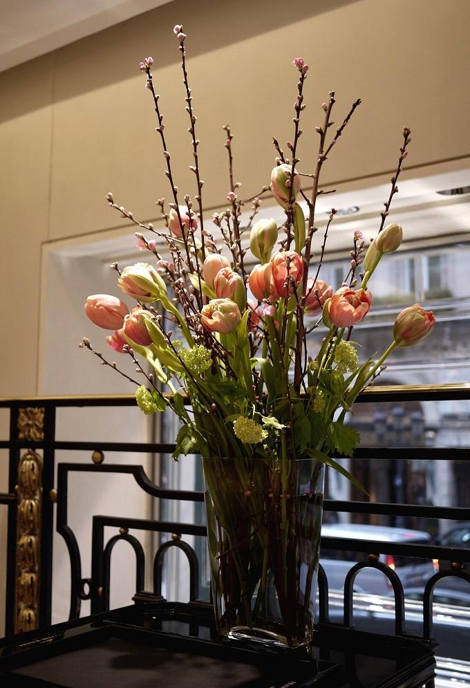 tulipe, viburnum, fleurs de pecher,