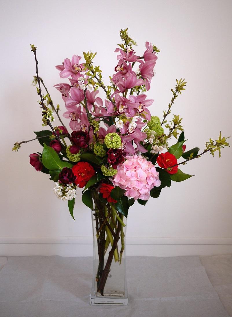 cymbidium, camélia, hortensia, cerisier, viburnum, tulipe,