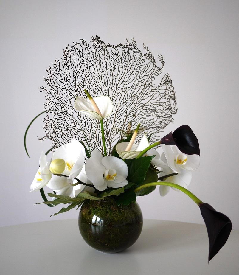 orchidée, calla, anturium, pavot,