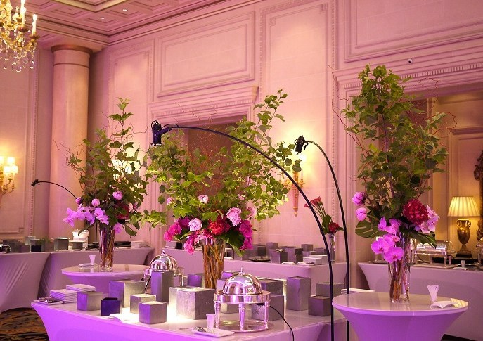 pivoine, orchidée, viburnum, hortensia,