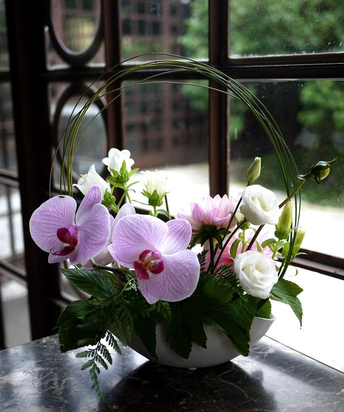 orchidée, freesia, lisianthus,