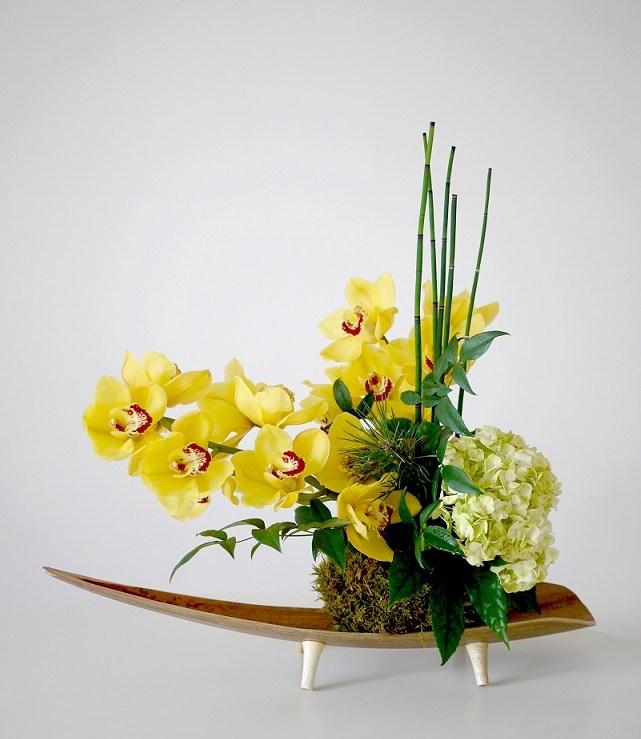 cymbidium, hortensia,