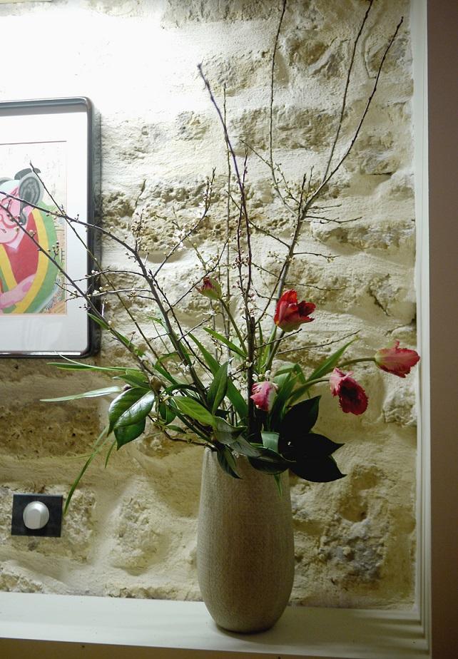 prunus, camélia, tulipe,