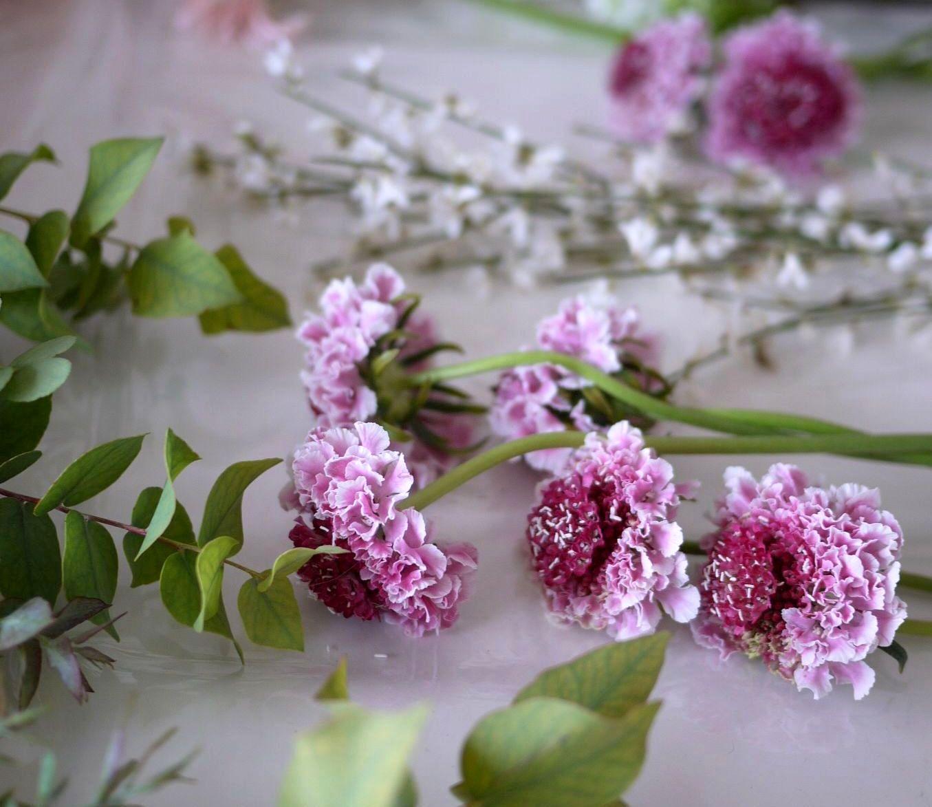 clemathis, eucalyptus, germini, lilas, scabieuse