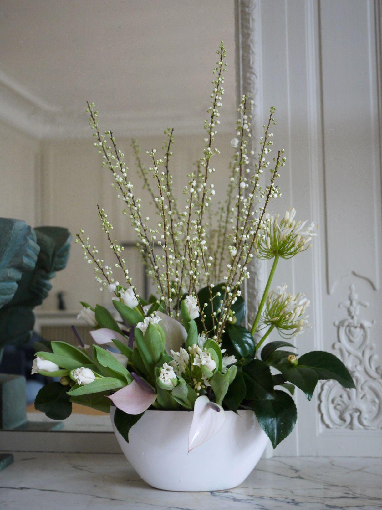 prunus, agapanthes, tulipe, camélia,